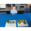 Sorting animals
