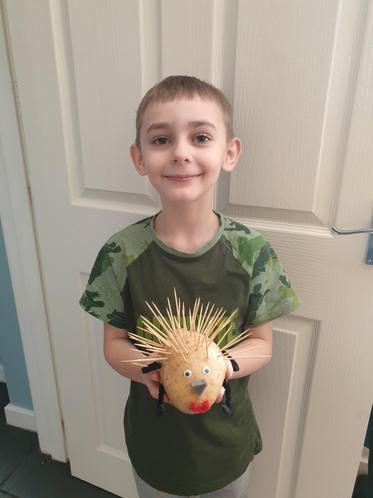 Archie J's super, prickly potato hedgehog!