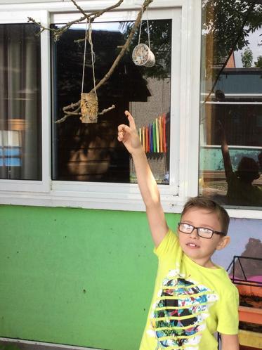 Sam's final marvellous bird feeder!