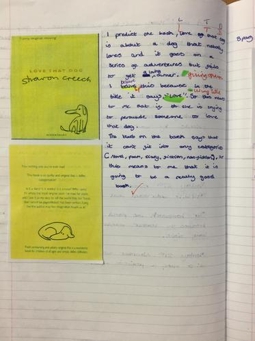 Y5 make predictions based on prior knowledge
