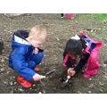 We found a really long worm!
