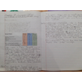 Isabelle  has completed a huge amount of fabulous work this week! Great stuff!