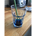 They used food colouring in the water.