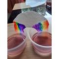 Growing a Rainbow!