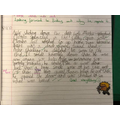 Great writing by George