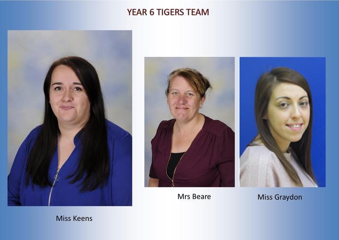Tigers Class