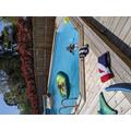 Freja in her swimming pool