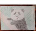 Clara's panda