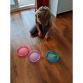 Isaac sharing pasta.