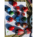 Can you find Harry's ladybirds in the woods?