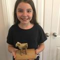 Georgia's Trojan horse