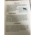 Cara's factfile about wolves