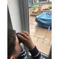 George birdwatching.