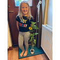 Jazmin's sunflower has grown!
