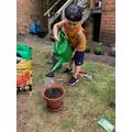 Bogdan watering.
