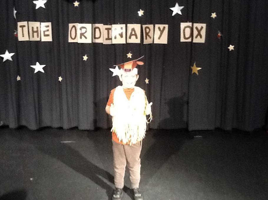 An Ordinary Ox