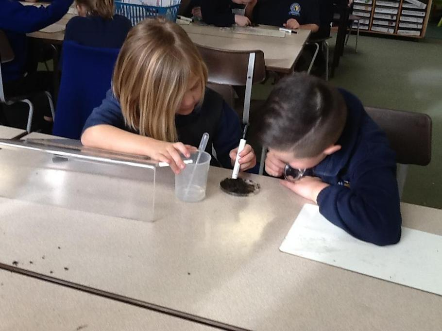 Science - Rocks and Soils - Investigating soil