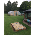 Our Polytunnel