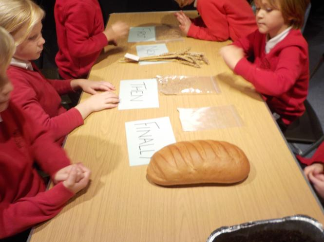 Sequencing from seed to bread.