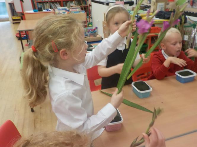 Carefully arranging the stems