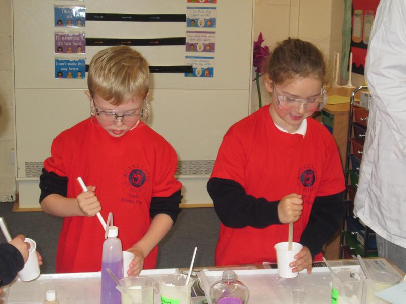 Science Fair (Y2)