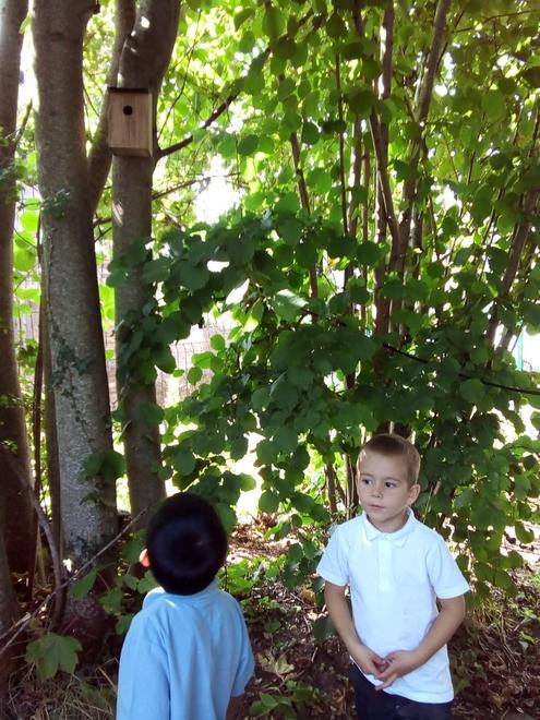 """""""We found a bird house."""""""