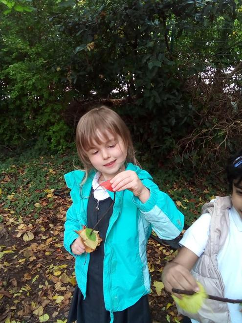 Concentrating to thread the leaves onto the stick.