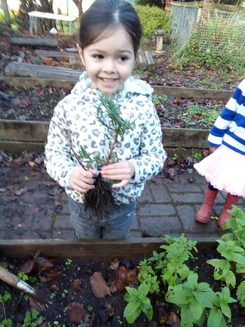 Adding to our herb garden!