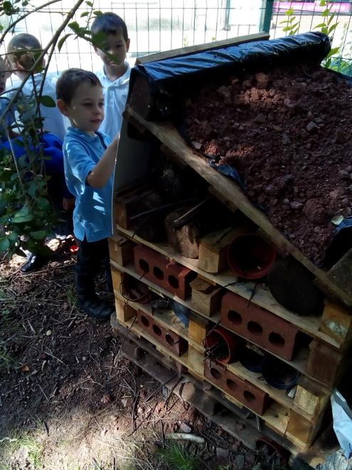 Identifying bugs on our Bug House.