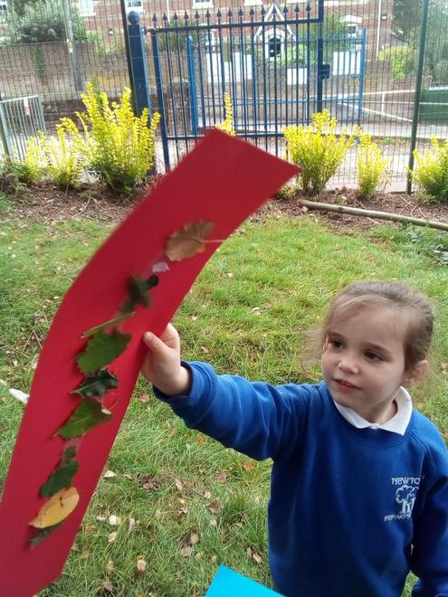 looking at the changing colours of the leaves.