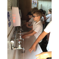 After visiting the farmyard, everyone must wash their hands.