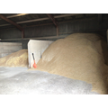 That's an awful lot of grain.