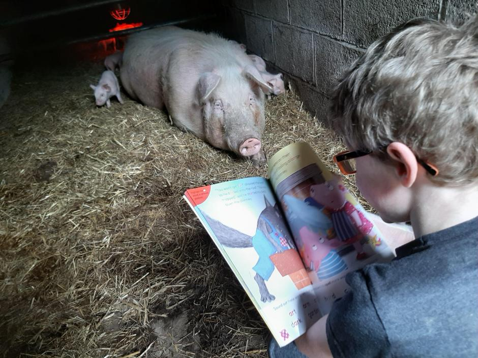 Mummy pig can relate to The Three Little Pigs!