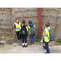 The rest becomes hay and is made into bales.  Each bale weighs about 20 times one of us!