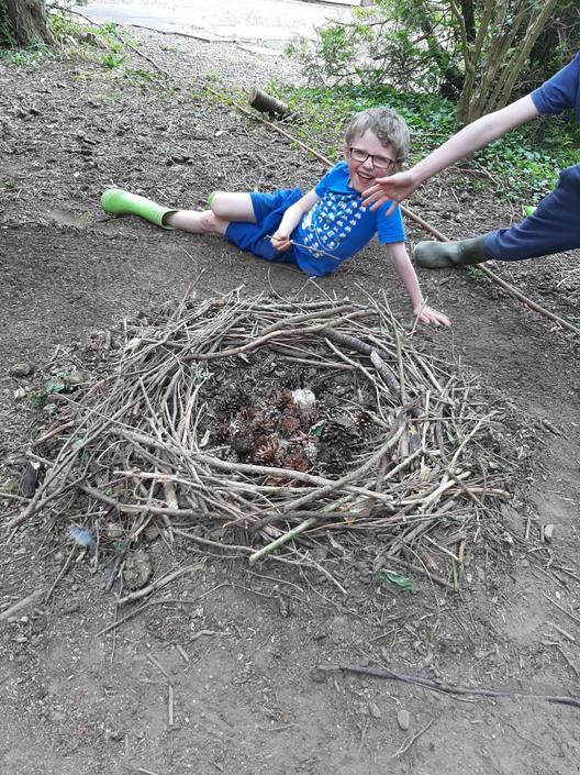 Rowan's land art nest