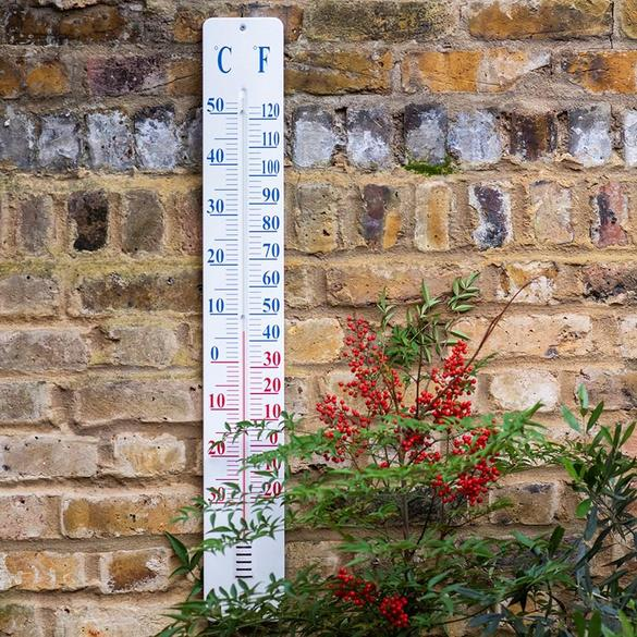 Take your temperature or check the weather outside using degrees centigrade.