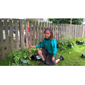 We have to measure our potato plants.