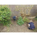 Doing a spot of weeding