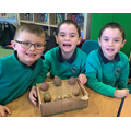 We enrole in the grow your own potatoes scheme