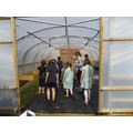 Year 4 tour the new polytunnel
