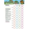 Big Pedal record sheet - pupil