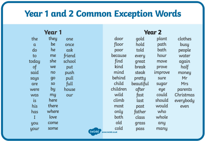 Can you write sentences using our Year 2 common exception words?