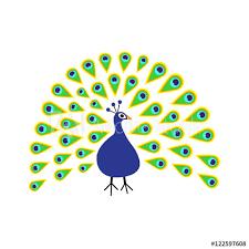 @Peacockclass2