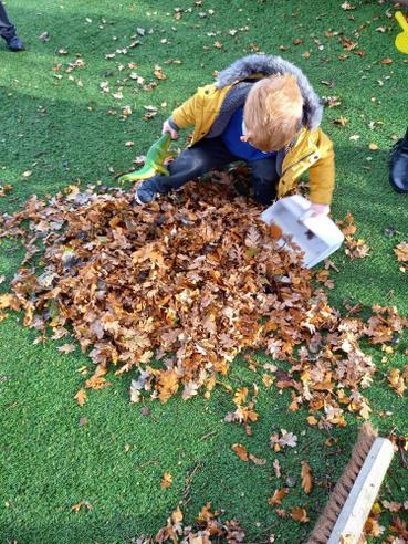 Helping to clear leaves