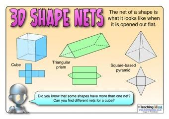 Nets of 3D Shapes