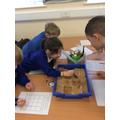 We held our own archaeological dig.