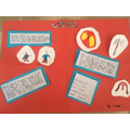 CR Anglo Saxons Project