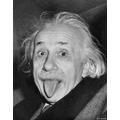 Albert Eistein - pioneering physicist