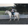 PC horse riding