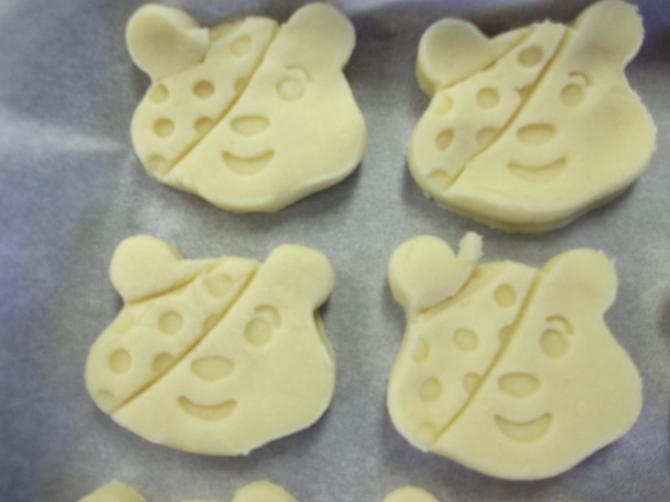 Pudsey faces